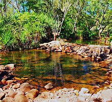 Colours of the Kimberley - a rock pool by georgieboy98