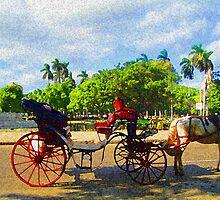 Horseride thru Cuba by Alison Brown