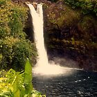 Rainbow Falls - Hilo, Hawaii by Stephen  Saysell