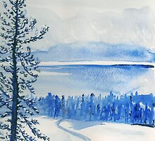 Winter in the Shuswap by Lynda Earley