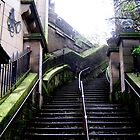 Edinburgh Stairs by Kareena  Kapitzke