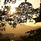 Japanese sunset by Gunnella