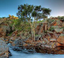 Mannum Falls at Sunrise - Murraylands, South Australia by Mark Richards