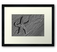On the Beach #6 Framed Print