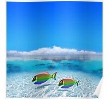 Gay Fishes in Polynesia Poster