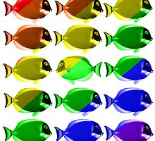 Gay fishes by Nasko .