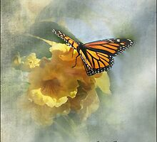 Hope's Visitor by Carolyn Staut