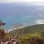 Lover's Leap, Jamaica by Allie Ludvigson