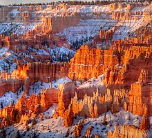 Bryce Canyon, Utah, Early Morning by rjcolby