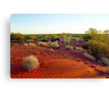 Red sands of the outback , Australia Canvas Print