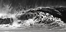 Bodyboarder At Banzai Pipeline 2011.2 by Alex Preiss