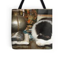 DOTTIE AND THE STONE CAT Tote Bag