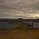 View from Bartolome, Galapagos Islands, 2010 by jackmbernstein