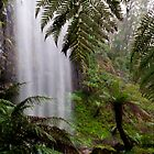 Bindaree Falls by Paul Oliver