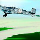 Takeoff! by Steve  Woodman