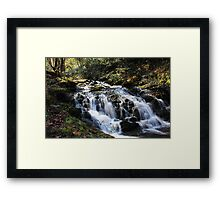 flowing down the mountain Framed Print