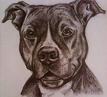 American Staffordshire Bull Terrier Portrait by MiDulceLocura