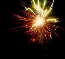 Fireworks by Thomas Martin