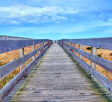 Up The Long Boardwalk by Jennifer Hulbert-Hortman