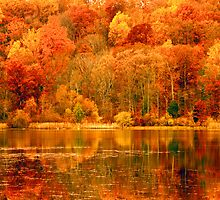 Pennsylvania's Fall Colors by ©  Paul W. Faust