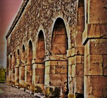Arcades in Lerma by Shienna