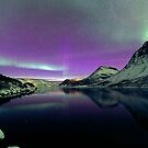 Aurora Borealis &amp; snow by Frank Olsen