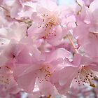 Floral Spring Flowers Landscape Fluffy Pastel Blossoms Baslee Troutman by BasleeArtPrints