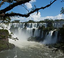 Iguassu Falls Brazil by Carol Bock