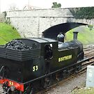 Swanage Railway - Herston Halt  by Meladana