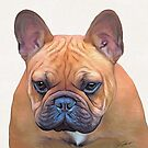 Erik the frenchie by Cazzie Cathcart