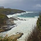 Coast of Tasman Peninsula by Yukondick