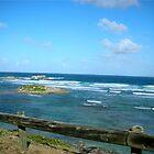 Ocean view by islefox