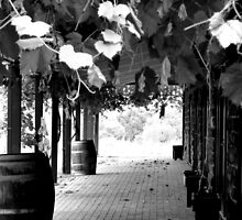 The Ghosts'of Annie's Winery  by Di-Trying