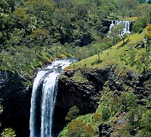 Ebor Falls  From The Second Fall by Liza Barlow