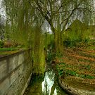 Willow and Water by John Hare