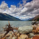 Moose Lake, BC, Canada by Teresa Zieba