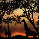 Giraffe Sunset by LucyAbrao