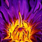 Purple Water Lily - Abstract by ©  Paul W. Faust