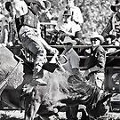 Stock Saddle Buckjump by Jane Keats