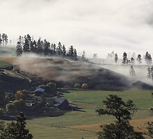 Fog on the Ranch by KansasA