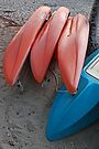 Kayaks by Leon Heyns