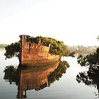 HOMEBUSH BAY SHIPWRECKS by briangardphoto