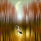 Fly the Moon by Jessica Jenney