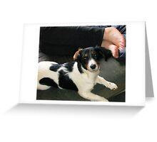 Good Girl Odessa! Greeting Card