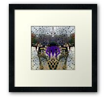 P1390022 _XnView _Iographica _GIMP Framed Print