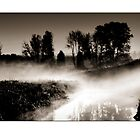 Dawn mist on the river Trent greetings card by Steve Crompton