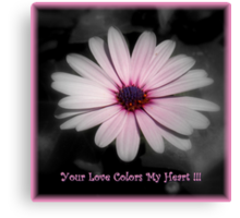 The Colors Of My Heart ~ Part One Canvas Print