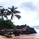 First stop on Maui by Marjorie Wallace