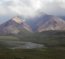 Moods Of Denali by Gary L   Suddath