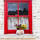 Window with flowers by Jim Orr